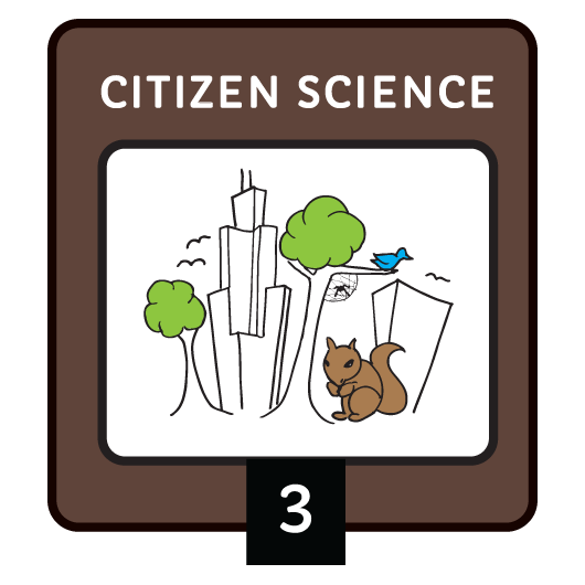 Citizen Science Level 3